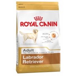 Royal Canin Labrador Adulto