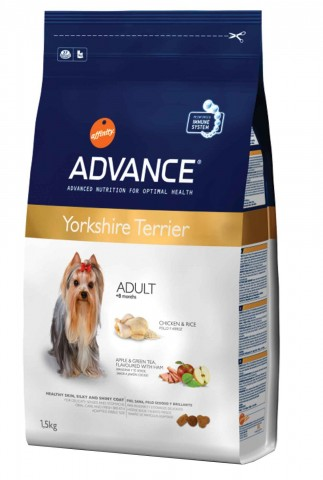 Advance Yorkshire Terrier Adulto