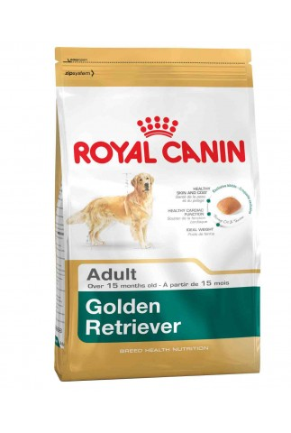 Royal Canin Golden Retriever Adulto