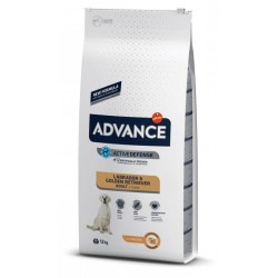 Advance Labrador Adulto